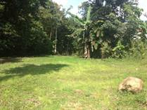 Farms and Acreages for Sale in San Ramon, Alajuela $99,000