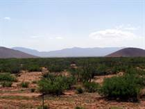 Farms and Acreages for Sale in Pearce/Sunsites, Pearce, Arizona $68,000