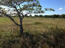 Lots and Land for Sale in Belize District, Belize $15,000