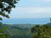Farms and Acreages for Sale in Hatillo, Puntarenas $89,000