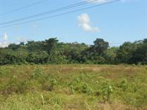 Lots and Land for Sale in Quepos, Puntarenas $2,499,000