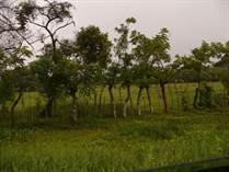 Lots and Land for Sale in Penonomé, Cocle, Coclé $220,000
