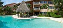 Condos for Rent/Lease in Langosta, Guanacaste $125 daily