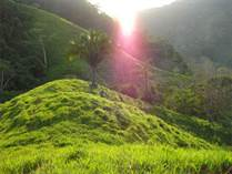 Farms and Acreages for Sale in Playa Hermosa, Puntarenas $650,000