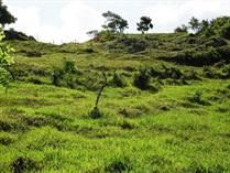 Lots and Land for Sale in Cabrera, Maria Trinidad Sanchez $9