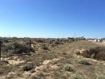 Lots and Land for Sale in San Rafael Ejido, Puerto Penasco/Rocky Point, Sonora $650,000