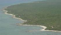 Lots and Land for Sale in Beach Front, Mahahual, Quintana Roo $20,000,000