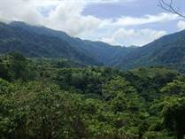 Lots and Land for Sale in Ojochal, Puntarenas $299,000