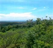 Lots and Land for Sale in Playa Hermosa, Jaco, Puntarenas $376,000