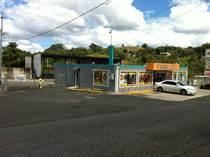 Commercial Real Estate for Sale in Leguizamo, Mayagüez, Puerto Rico $300,000