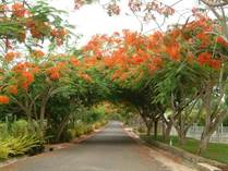 Lots and Land for Sale in Sosua Hills , Sosua, Puerto Plata $215,000