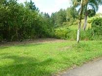 Lots and Land for Sale in Guzman Arriba Ward , Rio Grande, Puerto Rico $33,000