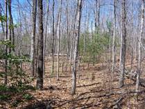 Lots and Land for Sale in Spruce Creek, Jamestown, Tennessee $60,000