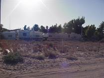 Lots and Land for Sale in El Mirador, Puerto Penasco/Rocky Point, Sonora $65,000