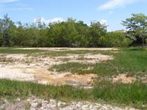 Lots and Land for Sale in Belize District, Belize $100,000