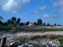 Lots and Land for Sale in Cabeza De Toro, Bavaro, La Altagracia $520,000