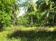 Lots and Land for Sale in Parrita, Puntarenas $155,000