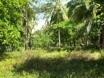 Lots and Land for Sale in Parrita, Puntarenas $155,000