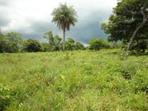 Lots and Land for Sale in Cañas, Guanacaste $7,000,000