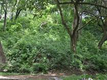 Lots and Land for Sale in Nosara, Guanacaste $255,000