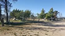Lots and Land for Sale in Sierra Linda Campestre, Tecate, Baja California $39,000