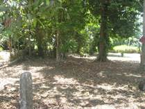 Lots and Land for Sale in Playa Bandera, Guanacaste $39,000