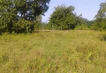 Lots and Land for Sale in Malindi , Coast KES87,500,000