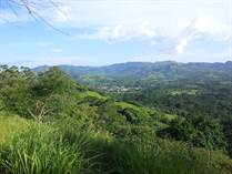 Farms and Acreages for Sale in Hojancha, Guanacaste $119,000