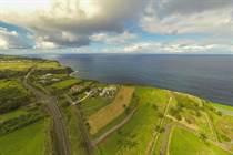 Lots and Land for Sale in Hamakua, Amauma falls, Hawaii $499,000