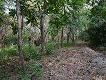 Lots and Land for Sale in Nosara, Guanacaste $95,000