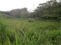 Lots and Land for Sale in Plata, Moca, Puerto Rico $64,000