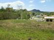 Lots and Land for Sale in Bo. Calvache, Rincón, Puerto Rico $119,000