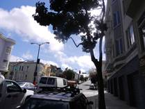 Homes for Rent/Lease in Mission Dolores, San Francisco, California $2,595 monthly