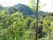 Lots and Land for Sale in Ojochal, Puntarenas $175,000