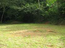 Lots and Land for Sale in Bo. Quemado, Mayaguez, Puerto Rico $35,000
