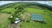 Farms and Acreages for Sale in Filadelfia, Guanacaste $949,000