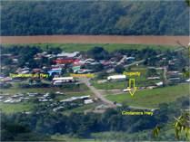 Commercial Real Estate for Sale in Palmar Norte, Puntarenas $392,000