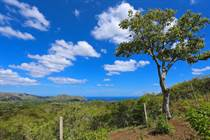 Lots and Land for Sale in Playas Del Coco, Guanacaste $400,000