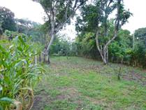 Lots and Land for Sale in Atenas, Alajuela $74,000