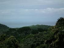 Lots and Land for Sale in Hatillo, Puntarenas $175,000
