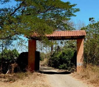 Papagayo  Development property  (Mango)