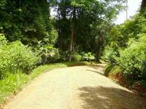 Lots and Land for Sale in Dominical, Puntarenas $49,900