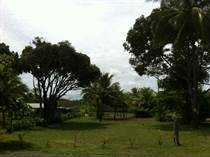 Lots and Land for Sale in Palo Seco Beach , Palo Seco, Puntarenas $65,000