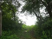 Lots and Land for Sale in Matapalo Beach , Guanacaste $59,000
