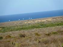 Lots and Land for Sale in Buena Vista, Baja California Sur $17,000