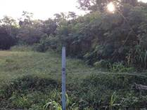 Lots and Land for Sale in Bo. Cuevas, Trujillo Alto, Puerto Rico $550,000