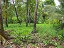Lots and Land for Sale in Bejuco Beach, Parrita, Puntarenas $65,000