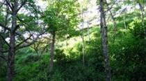 Lots and Land for Sale in Rincon de la Vieja, Guanacaste $215,000