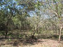 Lots and Land for Sale in Grande, Guanacaste $199,000
