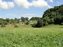 Lots and Land for Sale in Bo. San Antonio, Quebradillas, Puerto Rico $145,000